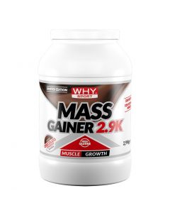 """Mass Gainer 2.9 kg """"Limited Edition"""""""
